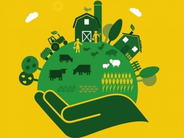 Κτηνοτροφία και περιβάλλον