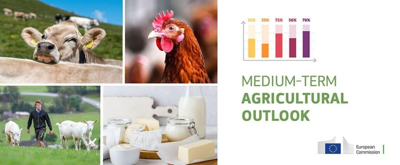 εξέλιξη παραγωγής γάλακτος και κρέατος τα επόμενα χρόνια